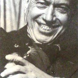 Miguel C Victorica